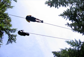 Zipline Adventure Tours